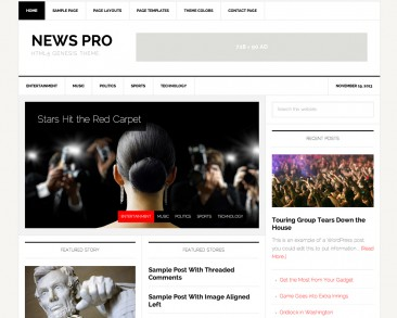 News Pro theme screenshot