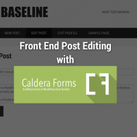 Front end post editing with Caldera Forms